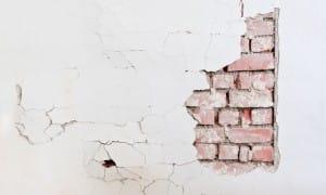 Účinné řešení na odstranění plísní na zdi Praha 1