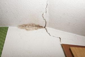 rozšiřování plísní v bytě