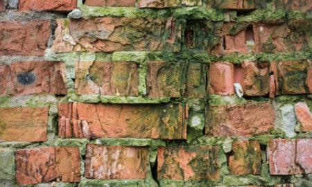 Čištění zateplených fasád od plísní